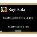 """Langues d'Afrique: traduction du mot """"apprendre"""" en Lingala"""