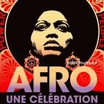 """Culture Afrique - Livre """"Afro, une célébration"""": l'Afrique au cœur"""
